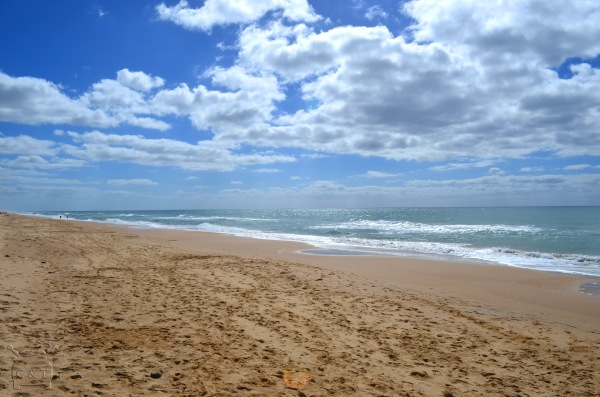 Seaspray Beach
