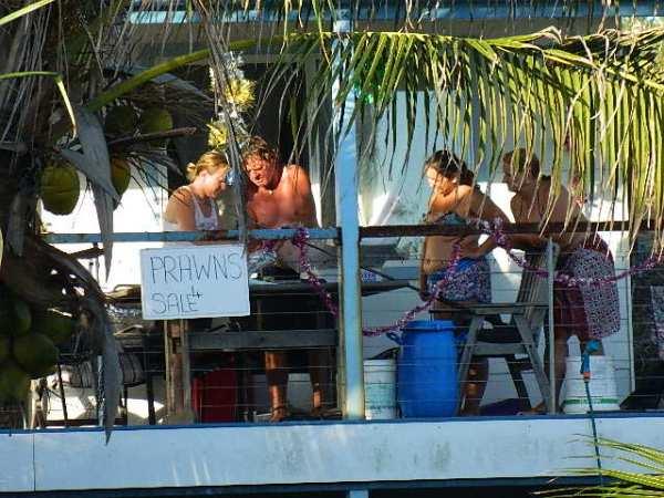 Comprando os camarões